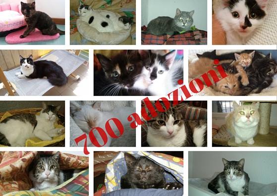 700 adozioni (1)